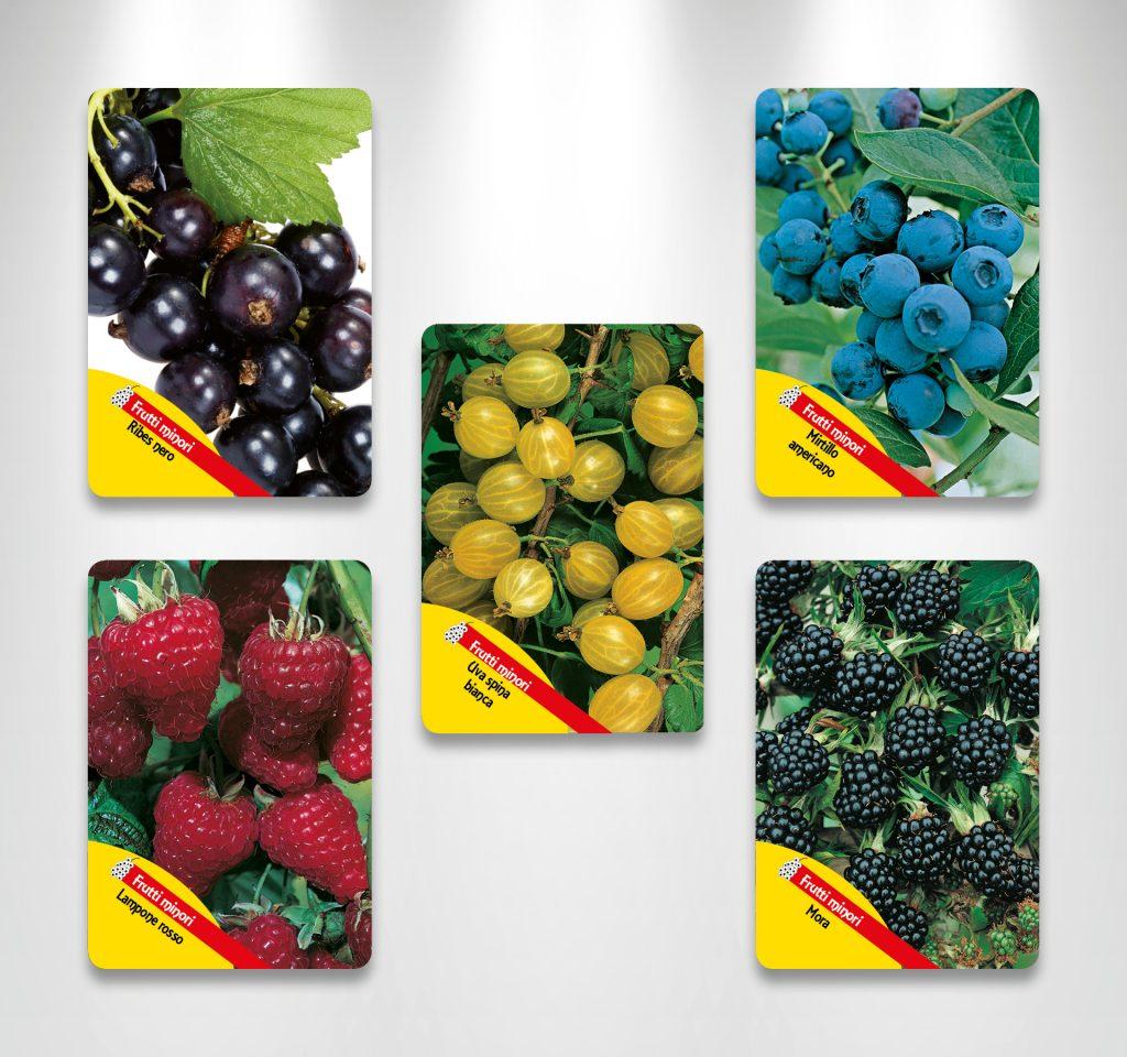 Etichette per arbusti da frutto