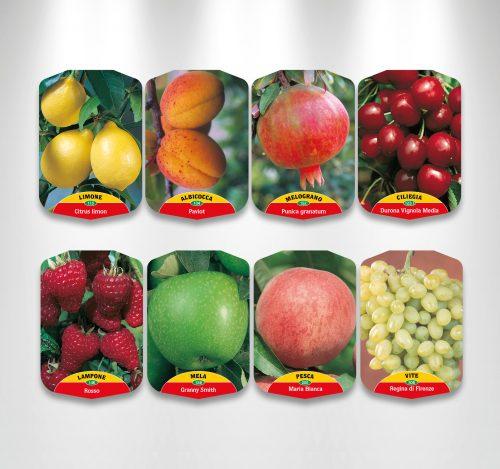 etichette per piante da frutto